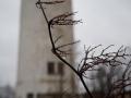 Wasserturm_Suedstadt_Ettlingerstrasse 20.jpg