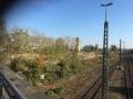 hinterdemhauptbahnhof - 11