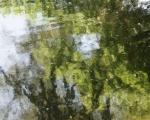 hochwasserjuni2013-1