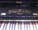klavierbauer_klavierstimmer_stamm15