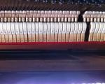 klavierbauer_klavierstimmer_stamm18
