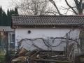 Kleingarten_stuttgarterstr_2018 - 49