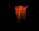 lichterfest_karlsruhe_stadtgarten_zoo_201311-jpg