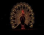 lichterfest_karlsruhe_stadtgarten_zoo_201312-jpg