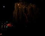 lichterfest_karlsruhe_stadtgarten_zoo_201313-jpg