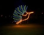 lichterfest_karlsruhe_stadtgarten_zoo_201326-jpg