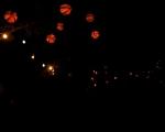 lichterfest_karlsruhe_stadtgarten_zoo_201335-jpg