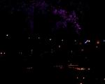 lichterfest_karlsruhe_stadtgarten_zoo_201340-jpg