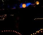 lichterfest_karlsruhe_stadtgarten_zoo_201343-jpg