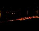 lichterfest_karlsruhe_stadtgarten_zoo_201344-jpg