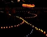 lichterfest_karlsruhe_stadtgarten_zoo_201347-jpg