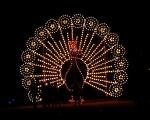 lichterfest_karlsruhe_stadtgarten_zoo_20136-jpg