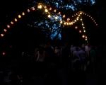 lichterfest_karlsruhe_stadtgarten_zoo_201362-jpg
