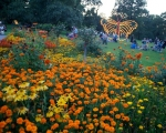 lichterfest_karlsruhe_stadtgarten_zoo_201371-jpg