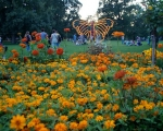 lichterfest_karlsruhe_stadtgarten_zoo_201377-jpg