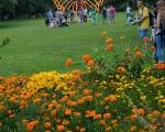 lichterfest_karlsruhe_stadtgarten_zoo_201379-jpg