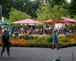 lichterfest_karlsruhe_stadtgarten_zoo_201389-jpg