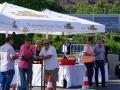 Wasserwerk_Oberwald_Bruecke_Suedstadt05492