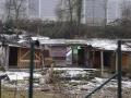 Kleingarten_Suedstadt_Karlsruhe04750