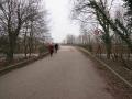suedstadt_gaerten_oberwald-8