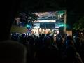 suedstadtfestival2016 (8 von 63)