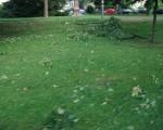 unwetter20juni2013-23