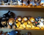 zooshop24