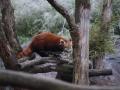 tierwelten_Zoo_1_1_2017--48