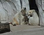 zoo_besuch_16juni2013-31