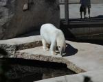zoo_besuch_16juni2013-51
