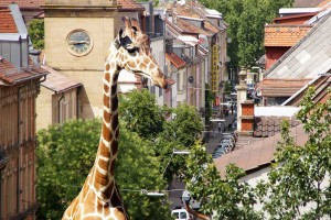 Giraffe in der Marienstraße
