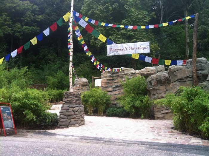 Buddhistische Gebetsfahnen zur Begrüßung für die Bären und die Menschen in der eröffneten Bergwelt Himalaya.